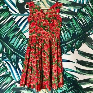 NWOT Poppy Fit and Flare Dress